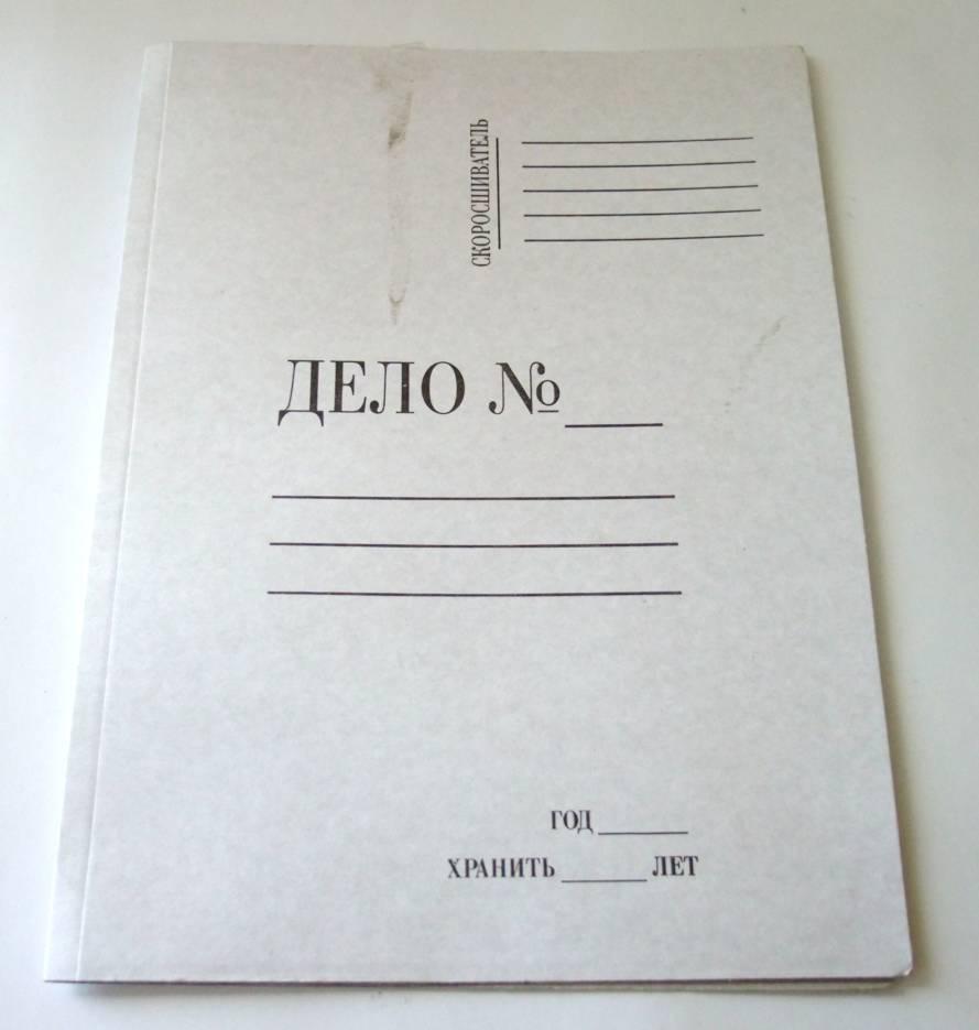 Папка со скоросшивателем Silwerhof А4 700 мкм корешок 20мм 281901-74